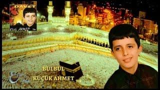 Küçük Ahmet - Bülbül