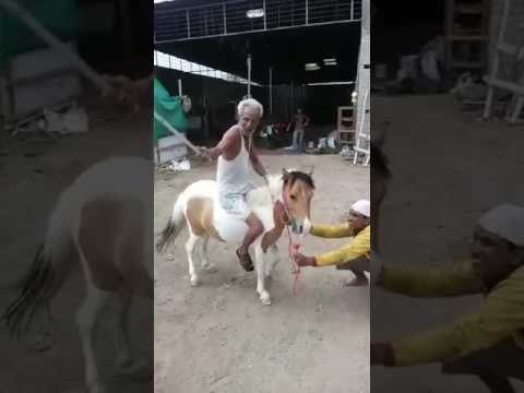Bhavubali 2017
