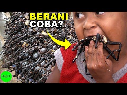 DIJAMIN PASTI MUAL, 5 Makanan Paling Menjijikkan Di Dunia, Di Indonesia Juga ADA