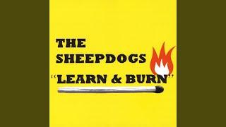 Gambar cover Learn & Burn