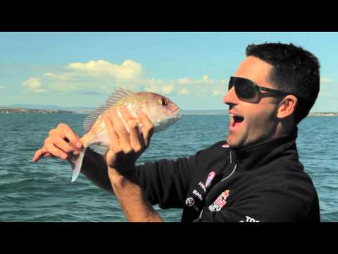 Fishing with Craig Lowndes and Jamie Whincup in New Zealand