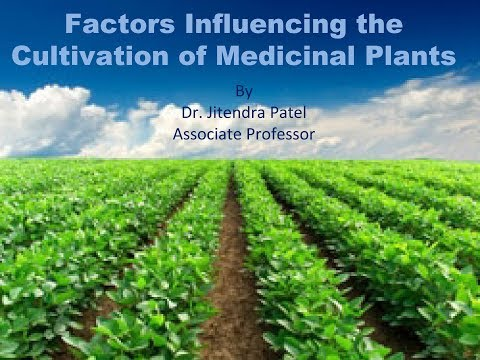8. Factor affecting of Cultivation of medicinal plants