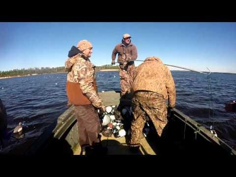 New River Diver Hunting 14-15 Season