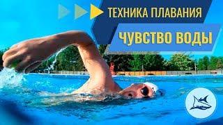Как научиться плавать кролем? Чувство воды