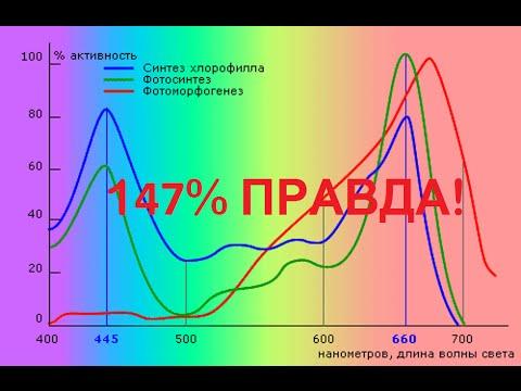 Led спектр конопля купить семена конопли в кормах