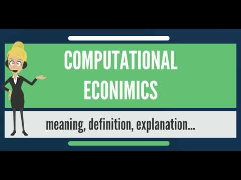 What is COMPUTATIONAL ECONOMICS? What does COMPUTATIONAL ECONOMICS mean?