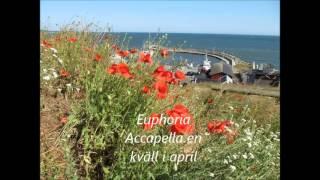 Euphoria - Loreen Acapella cover