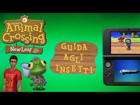 TUTTI GLI INSETTI [GUIDA IN ITALIANO]   Animal Crossing New Leaf
