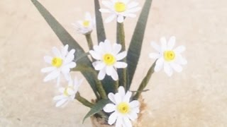 Create  A Cute Miniature Daisy Flower Pot - Diy Crafts - Guidecentral