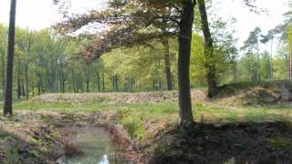 Metal detecting ww2 battlegrounds in Holland, Belgium and Germany (7)