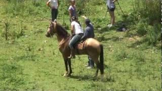 Riding Ladies In Brasilien (Making Of)