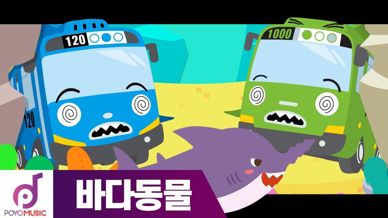타요 노래 | 상어친구들 | 바다동물동요 l DJ타요의 뮤직 스테이션