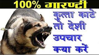 कुत्ते के काटने का घरेलु आयुर्वेदिक उपचार DOG BITE || Ayurved Samadhaan