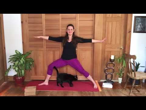 Yoga for a Herniated Disc/Major Lower Back Pain