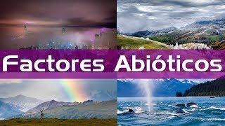 Ejemplos De Factores Abióticos En Un Ecosistema / Factores Abióticos Terrestres y Acuáticos