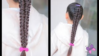 Edge Fishtail Braid | Hairstyles for Long Hair | Braided Hairstyles | ChikasChickEng