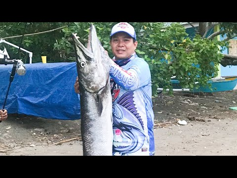 Biggest Great Barracuda I Caught | Fishing In The Philippines | Iligan Anglers Club | Jigging