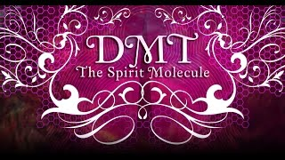 Dmt: The Spirit Molecule  2010   Multi Subs
