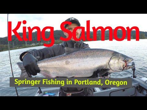 King Salmon Fishing In The Willamette River.