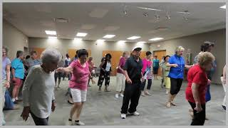 Randolph Township Library Day 2 Free August 2019 Line Dance Class