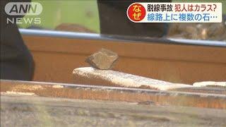 外房線脱線事故 線路に置き石の跡・・・犯人はカラス?(20/05/14)