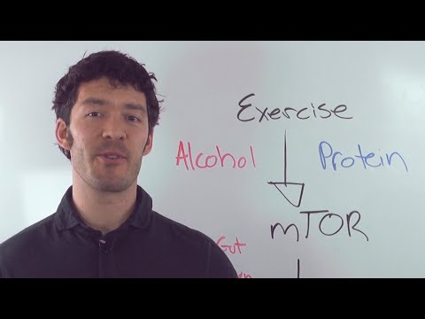 alcohol recovery workout