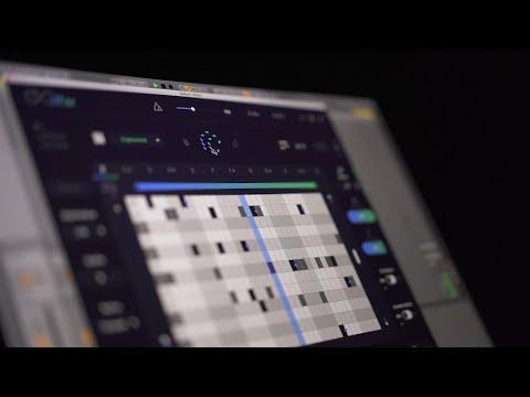 RIFFER v2.0 by Audiomodern