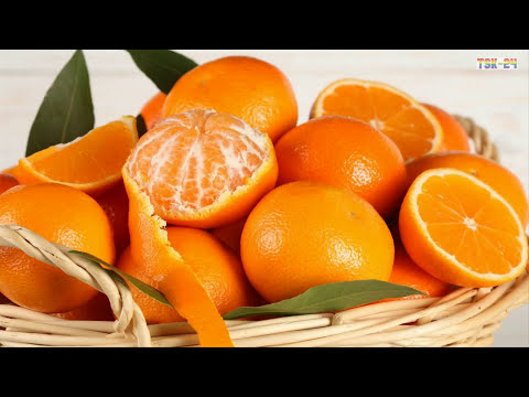 WOW! Amazing Agriculture Technology - Orange tree