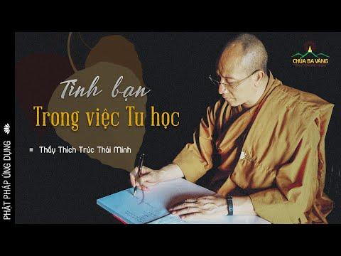 Tình Bạn Trong Việc Tu Học   ĐĐ Thích Trúc Thái Minh
