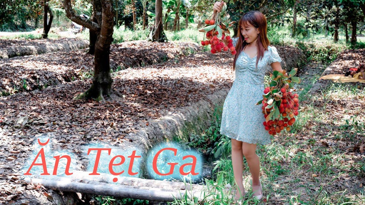 Bến Tre #7: Khám Phá vườn trái cây Bến Tre P1, vô hái ăn mệt nghỉ