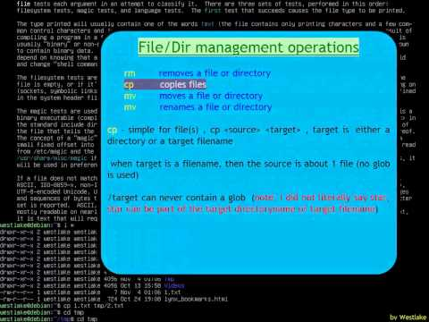Linux basics in command line, How to use (Part III 1 of 2)(t00)