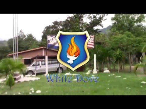 Bilingie White Dove Schooll Santa Clara