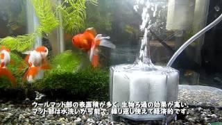 Repeat youtube video 【投げ込み式の水作】フィルターと金魚水槽の紹介【外掛け式のテトラ】