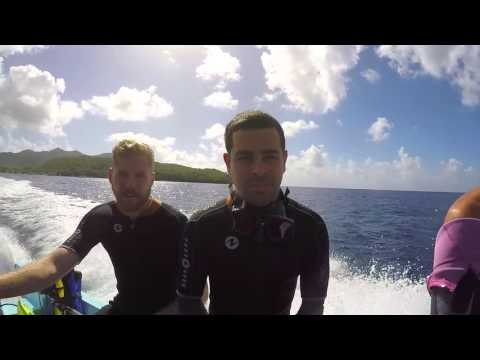 Martinique Scuba, Cliff Jumping, and Beaches