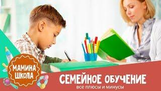 Семейное обучение: итоги 2-х лет без школы