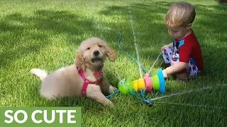 Sprinkler fun for toddler and puppy