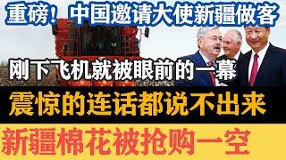 新疆棉花大结局,中国邀请美国大使再来新疆,刚下飞机就被眼前的一幕吓傻了