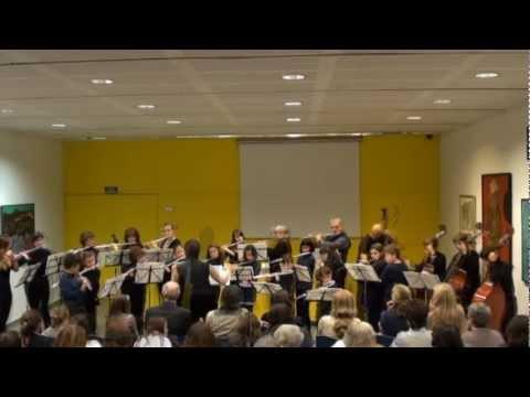 Any Toldrà: Flautes travesseres i contrabaixos presenten