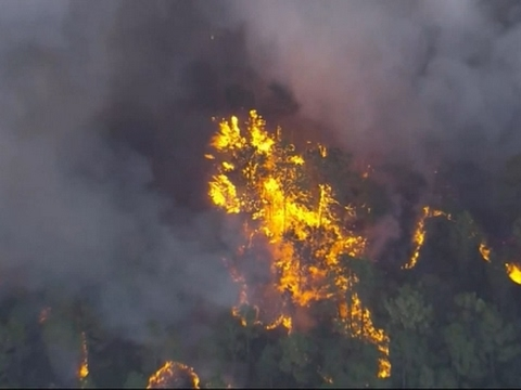 homes-evacuated-in-florida-brush-fire
