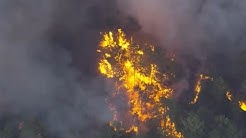 Homes Evacuated in Florida Brush Fire