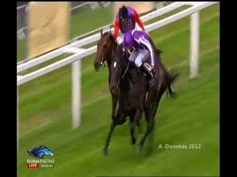 Prince of Wales's Stakes G1 -  SO YOU THINK -  ROYAL ASCOT 2012