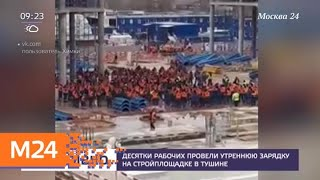 Смотреть видео Десятки рабочих провели утреннюю зарядку на стройплощадке в Тушине - Москва 24 онлайн