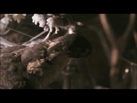 Rattlin Bones - Kasey Chambers and Shane Nicholson