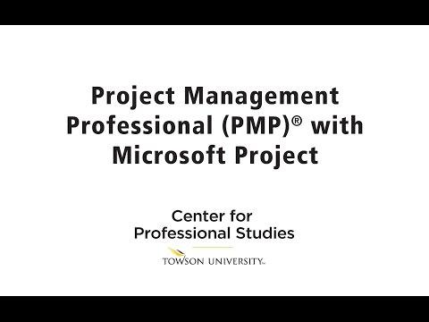 Professional Project Management Course