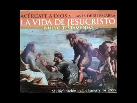 6 Enrique Rocha   La Historia Sagrada Nuevo Testamento   Volumen 6
