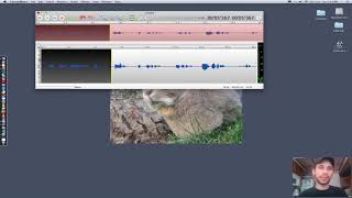 Using Twisted Wave voice recording software for voice overs
