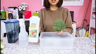 과일세정제/디쉬드랍스/과일채소세정제/데몬영상