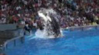 Slow Motion Shamu attack and throw :)