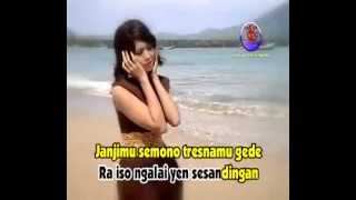 Video pujiyayu - layang sworo voc suliana download MP3, 3GP, MP4, WEBM, AVI, FLV Agustus 2017