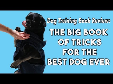 """Dog Training Book Review """"The Big Book of Tricks for the Best Dog Ever"""" by Larry Kay & Chris Perondi"""